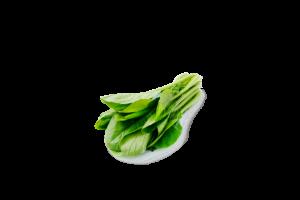 Leafy Fresh Choy Sum