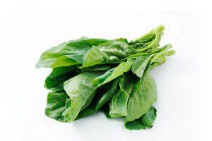 Leafy Fresh Chinese Broccoli (Gai Choy)