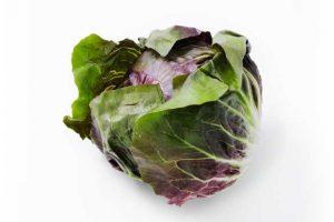 Leafy Fresh Radicchio