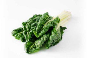 Leafy Fresh Silverbeet